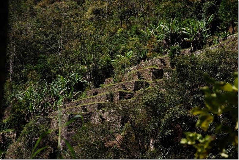 DSC_0014-Peru