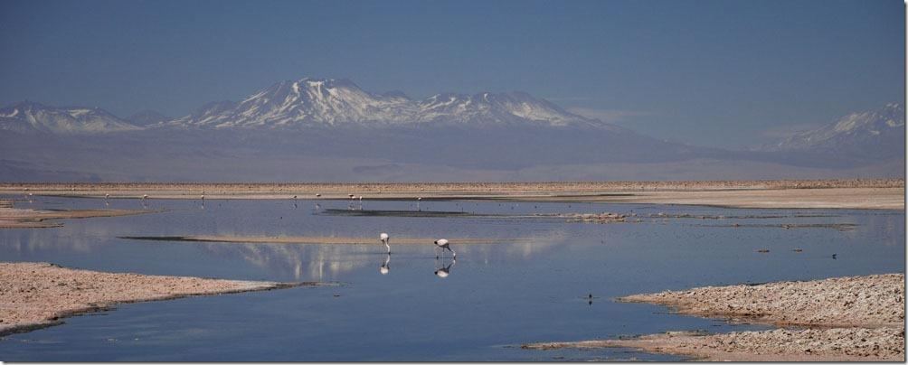 -DSC_0642 - Chile