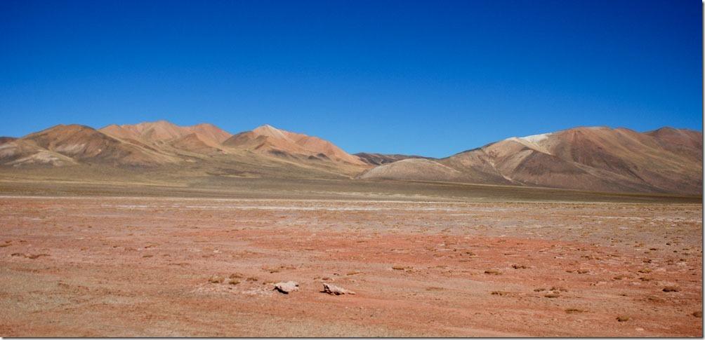 DSC_0707 - Argentinien 2