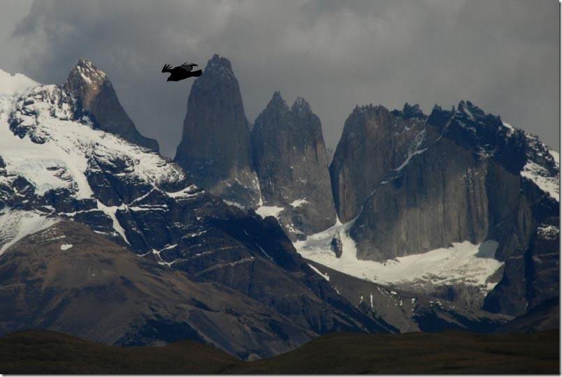 DSC_0310-Chile4